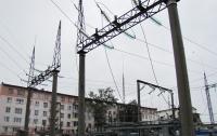 Кот оставил без света более 2 тысяч человек в России