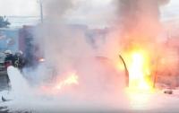 Под Киевом в результате ДТП загорелся автомобиль с беременной (видео)