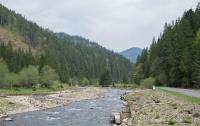 Страшную находку обнаружили в речке на Закарпатье