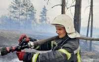Огонь угрожает 32 населенным пунктам в Луганской области (видео)
