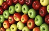 В стране наблюдается дефицит качественных яблок