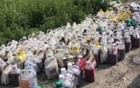 Сколько ядохимикатов попало в украинскую речку