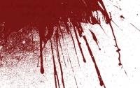 На Харьковщине гость убил радушного хозяина отверткой