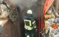 Мощный пожар произошел в одном из киевских кафе
