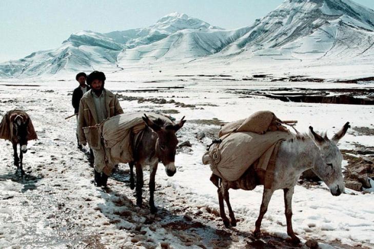 Число погибших схода лавин вАфганистане превысило 100 человек