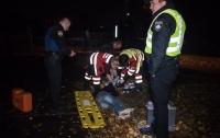 Сбитый полицейскими грабитель умер