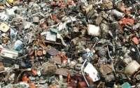 Интернет-пользователям предложили найти кота на фото мусорной свалки