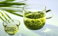 Зеленый чай помогает в борьбе с раком костного мозга – ученые