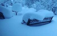 Францию накрыл снегопад