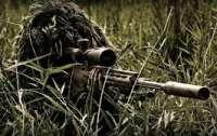 Разведка докладывает об активизации вражеских снайперов