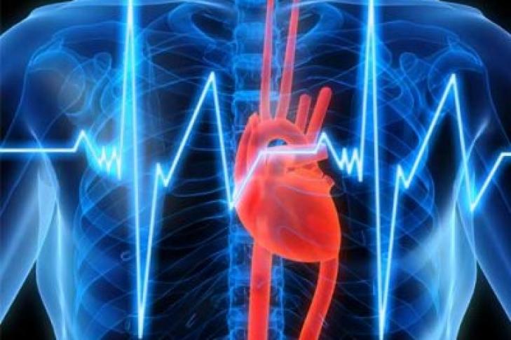 Мед. работники при помощи интернета будут лечить пациентов синфарктом