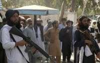 Раскрыты источники доходов талибов
