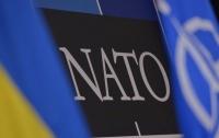 В США заявили, что Украина не станет членом НАТО в ближайшие годы