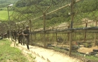 Солдат КНДР сумел сбежать в Южную Корею под обстрелом сослуживцев