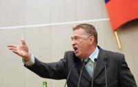 Жириновский пообещал побить все окна голландского посольства