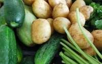 В Украине дорожают популярные овощи. Цена картофеля на оптовом рынке выросла до 7 грн/кг
