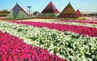 В пустынном Дубаи открыли самый большой в мире парк цветов