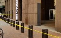 20 тысяч пчел заблокировали вход в небоскреб в Нью-Йорке