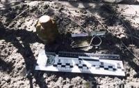 За покупками с гранатой: На Херсонщине у посетителя рынка изъяли Ф-1