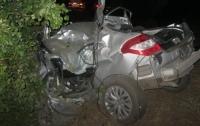 На Херсонщине водитель разбил авто об дерево, погибла девушка