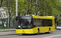Украина в два раза нарастила импорт автобусов