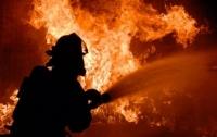При пожаре на Днепропетровщине погиб мужчина