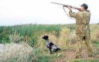 В августе начинается сезон охоты