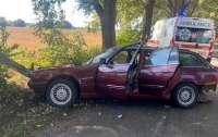 Под Киевом пьяный водитель совершил смертельное ДТП