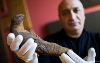 Мумию египетского сокола, которой 2 тыс. лет, нашли в Германии