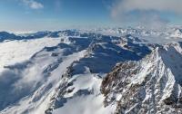 В Альпах из-за глобального потепления появятся пальмы - ученые