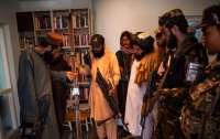 Талибы захватили посольство Норвегии: уничтожают вино, диски и детские книги (фото)