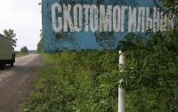 Вблизи Львова обнаружен скотомогильник