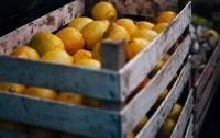 В Китае задержали наркоторговца, который прятал метамфетамин в апельсинах