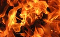 Украинцам угрожают пожары
