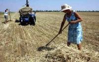 Украинцы уверены: фермерам нужно помогать