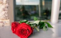 Киевляне несут цветы к посольству РФ в знак скорби по жертвам крушения А321