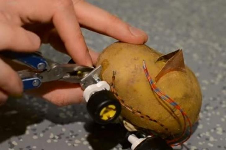 Робота-беспилотника изкартошки создал польский инженер