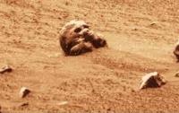 Уфологи нашли на спутнике Земли человеческий скелет