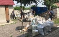 Почти две тонны янтаря изъяли у иностранца на Житомирщине