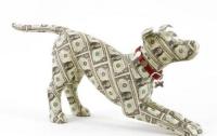 Госзакупки остаются рассадником коррупции