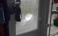 В Киевской области подросток под кайфом устроил погром в магазине