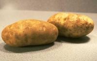 Где продается самый недорогой картофель