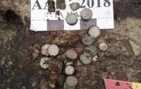 Археологи знайшли 2 кілограми срібних монет у заповіднику
