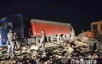Львовский мусор отыскали ночью на Житомирщине