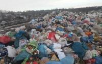 В Николаевской области на свалке нашли мертвого младенца