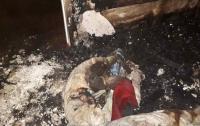 В многоэтажке Запорожья произошел смертельный пожар
