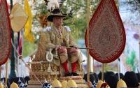 Король Таиланда приютил 13 собак, погибающих от голода