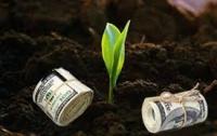 Рынок земли сильно поспособствует росту украинской экономики