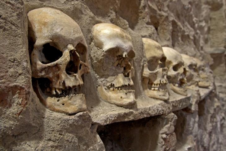 ВМехико откопали 600 человеческих черепов— Город накостях