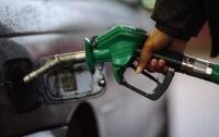 Розничные цены на бензин и дизтопливо выросли